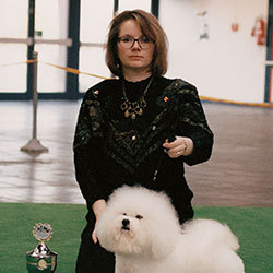 Multichampion 'Snowflake Queen of the breed' | Snowflake Bichon Frisé